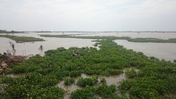 Landschaftsbild auf dem Weg zurück von der Provinz, in der Nähe von Phnom Penh